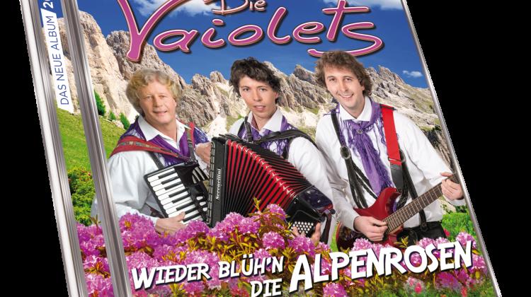 171.254 3Da Vaiolets Wieder blühen die Alpenrosen neu